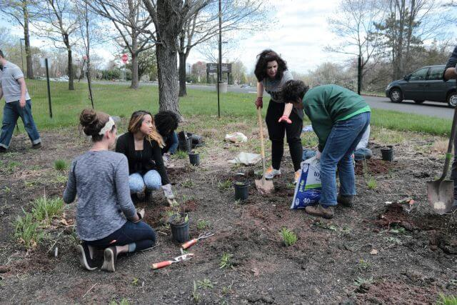 students in rainwater garden