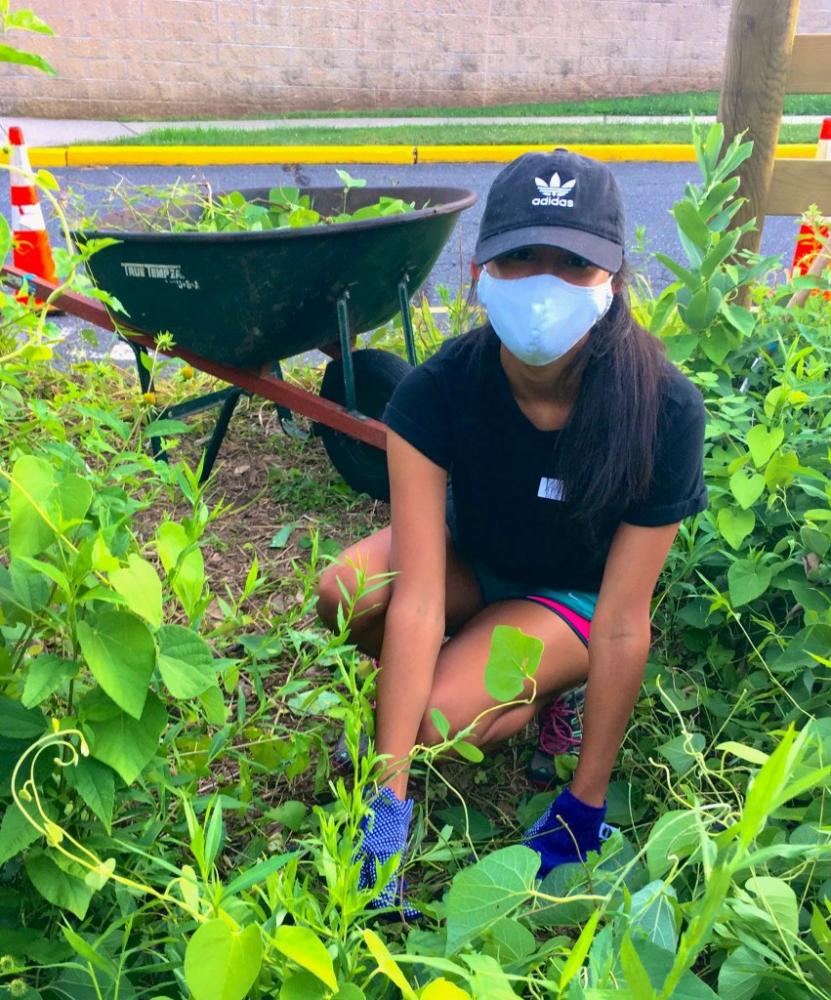 student working on butterfly garden