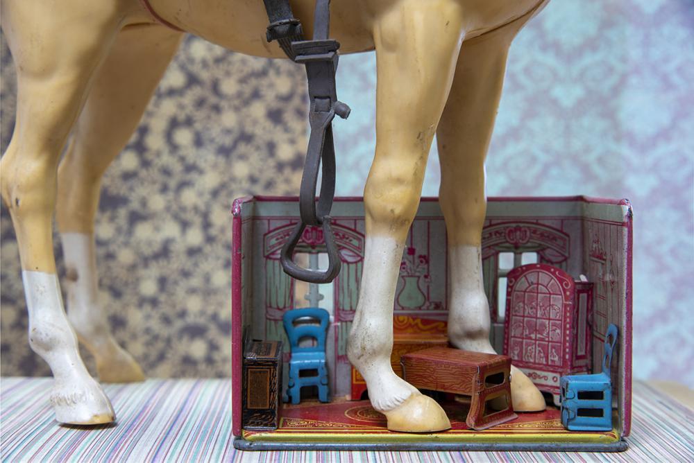 Horse Legs color photograph