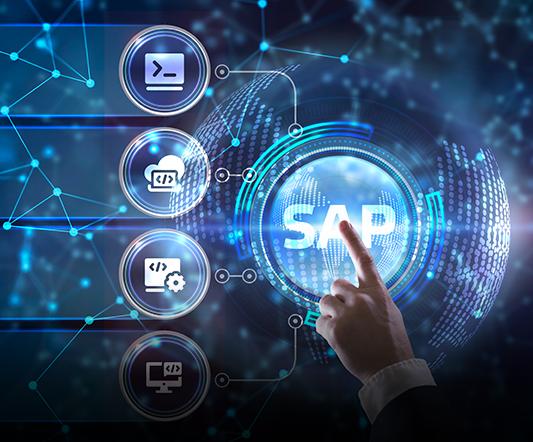 Career paths in SAP Basis HANA Administration
